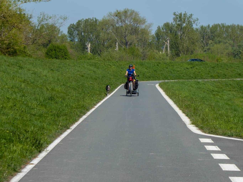 Rheinradweg-2-von-14