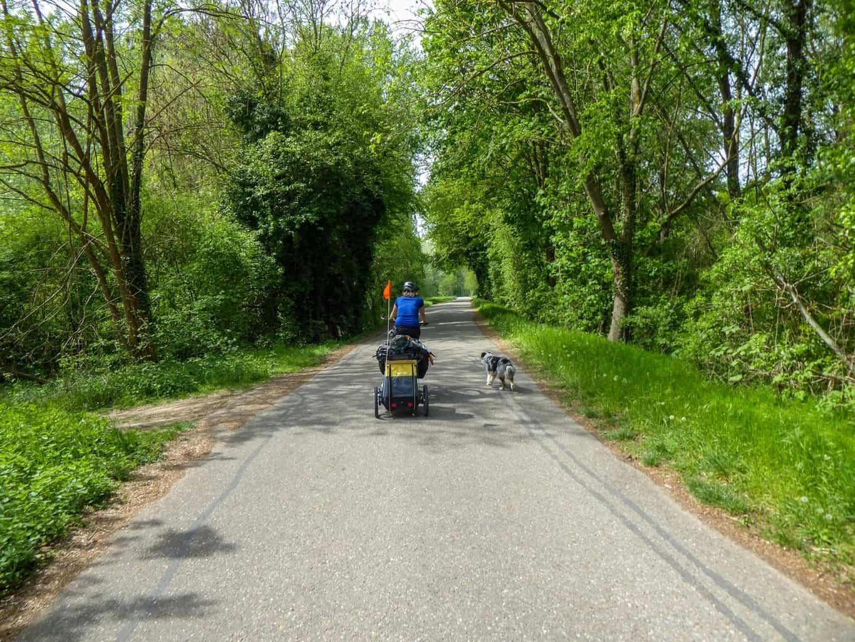 Rheinradweg-3-von-12