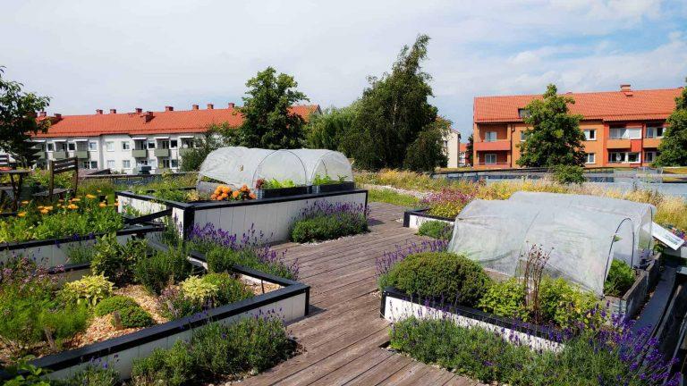 sustainabilty sweden